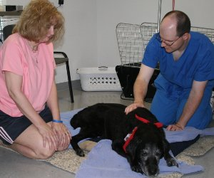 Photo of Ralph being treated with Acupuncture